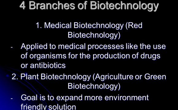 4 Branches of Biotechnology 1