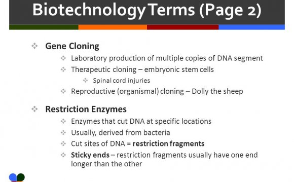 Slide 3 of 25 Biotechnology