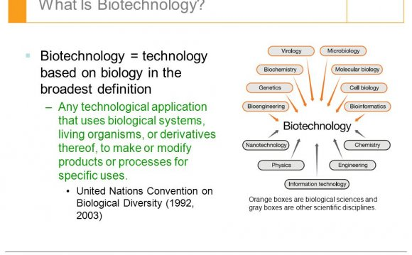 What is Biotechnology course?