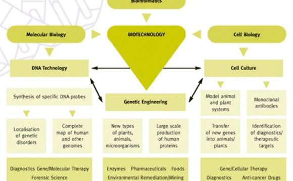 Biotechnology products examples
