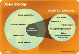 Biotechnology and modern biotechnology defined