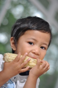 Boy eating corn XSmall