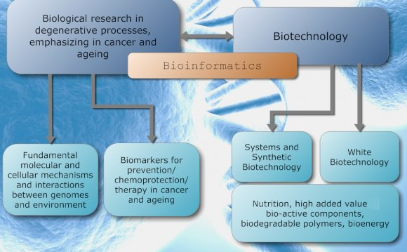 New Research in Biotechnology
