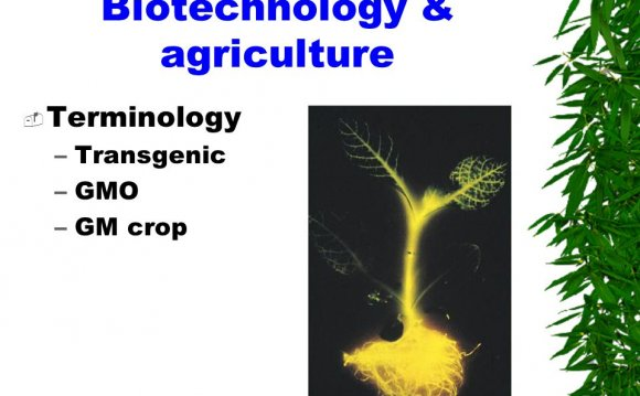 What is Plant Biotechnology?