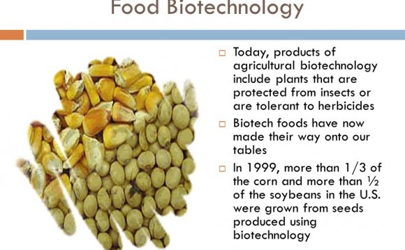 Products of Agricultural Biotechnology