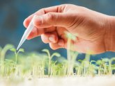 Biotechnology in agriculture articles