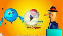 Atoms and Molecules -Basics -Animation lesson for kids