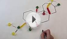Steviol molecular structure - Sweet Side of Chemistry